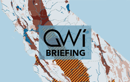 GWI Briefing for website.png