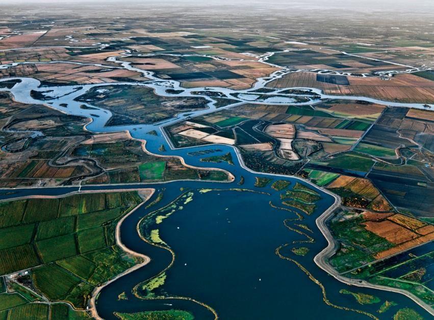 River Delta.png